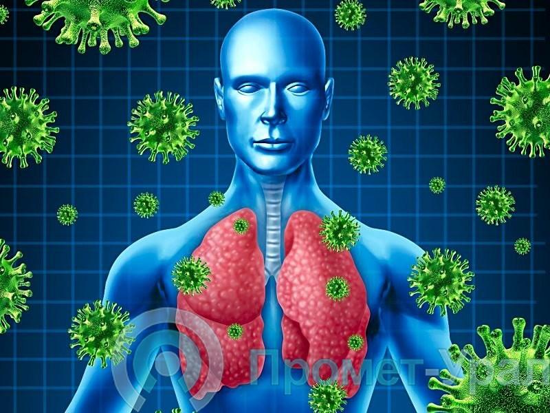 Диагностика коронавирусной инфекции